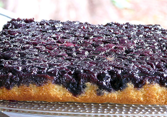 blueberry upside down cake blueberry cake recipe the answer is cake 1978